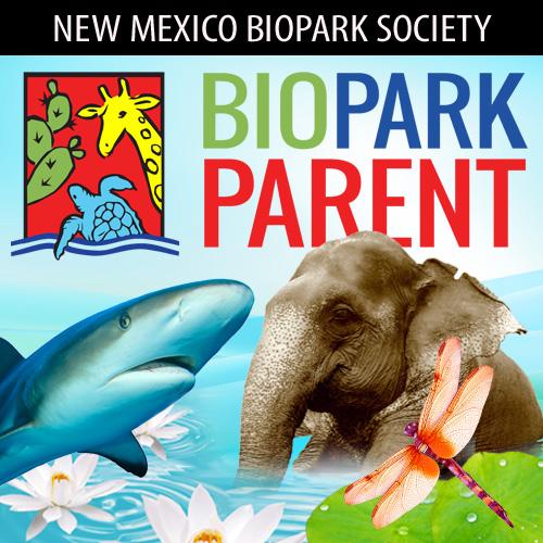 BBP_store_logo